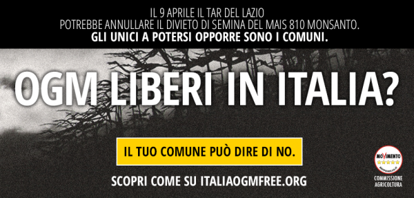 m5s - italiaogmfree - facebook highlight